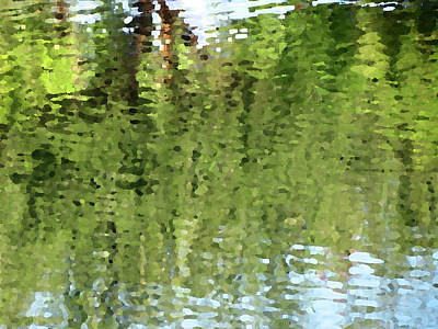 Photograph - Trees Reflected by Laurel Powell