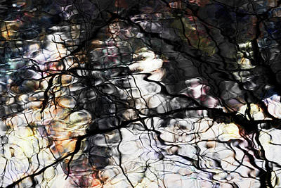 Photograph - Trees Reflection Color by Yulia Kazansky