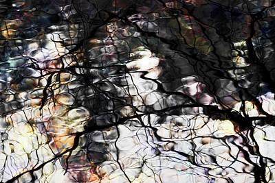 Photograph - Trees Reflection Color by Yulia Kazansky