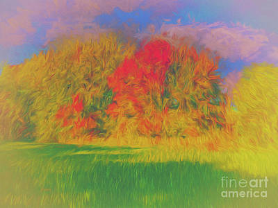Digital Art - Trees Sky And Grass by Leigh Kemp