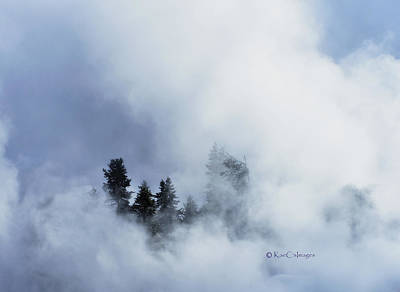 Trees Through Firehole River Mist Art Print by Kae Cheatham