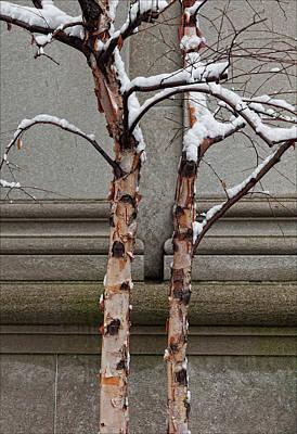 Trees Wall And Snow Art Print by Robert Ullmann