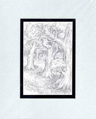 Drawing - Treescape In Forest by Ruth Renshaw