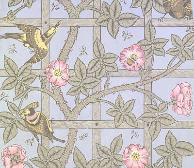 Sparrow Painting - Trellis   Antique Wallpaper Design by William Morris