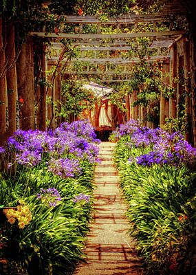 Photograph - Trellis Pathway by Joseph Hollingsworth