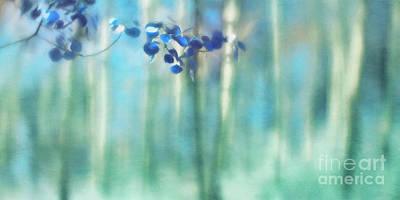 Photograph - Trembling Leaves by Priska Wettstein