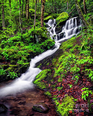 Tremont Area Waterfall Art Print by Madonna Martin