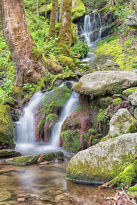 Photograph - Tremont Road Waterfall by Victor Culpepper