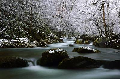Photograph - Tremont Treasure Great Smoky Mountains National Park by Joel E Blyler