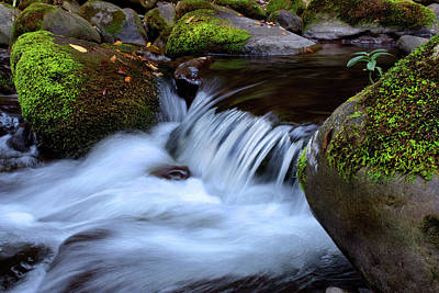 Photograph - Tremont Waterfall Closeup In Smoky Mountains National Park by Justin Kelefas
