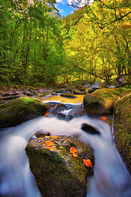 Photograph - Tremont Waterfall In Smoky Mountains National Park by Justin Kelefas