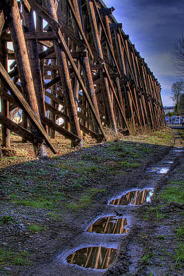 Photograph - Tressel Reflections by David Patterson