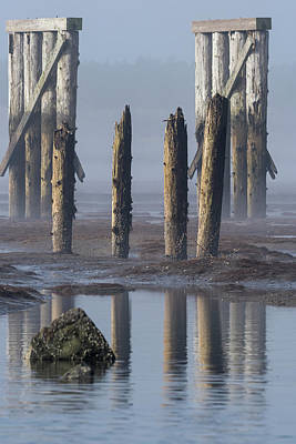 Photograph - Trestle And Pilings by Robert Potts