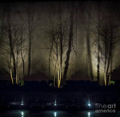 Photograph - Tri-birch by James Aiken
