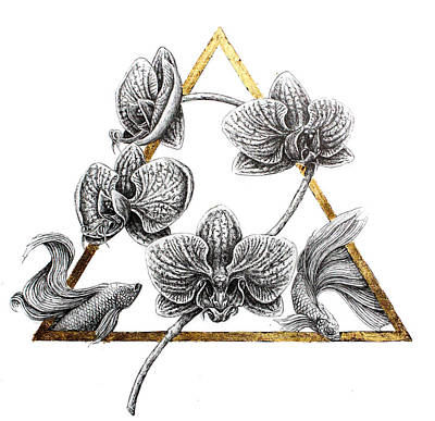 Orchid Drawing - Triangulate by Danielle Trudeau