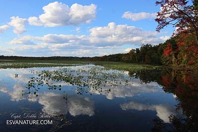 Photograph - Tributary 9566 by Captain Debbie Ritter