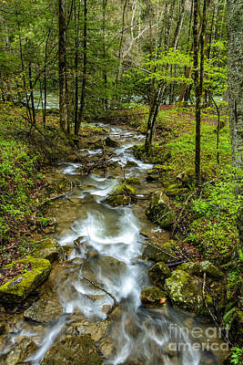 Virginia River Photograph - Tributary Back Fork Of Elk River by Thomas R Fletcher