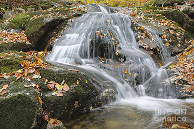 Roadside America Photograph - Tributary Of Lost River - Woodstock New Hampshire  by Erin Paul Donovan