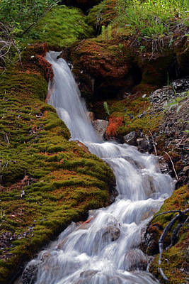 Photograph - Trickle Falls by Whispering Peaks Photography