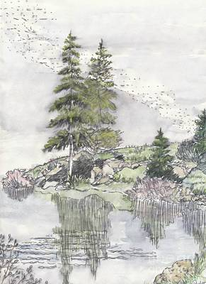 Trickle Park Colorado Art Print