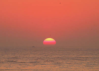 Photograph - Tricolor Sunrise by Robert Banach