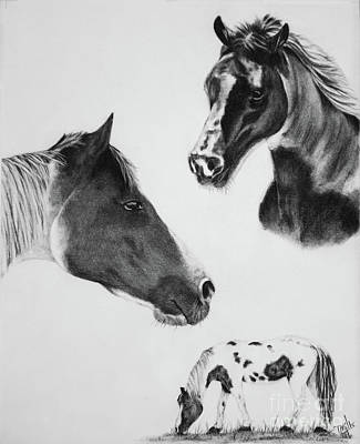 Drawing - Trifecta by Terri Mills