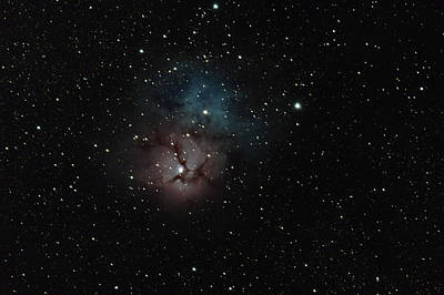 Photograph - Trifid Nebula by David Watkins