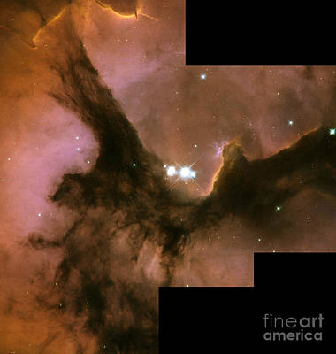 Heavenly Body Photograph - Trifid Nebula, M20, Ngc 6514 by Science Source