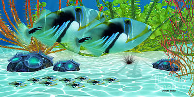 Triggerfish Art Print