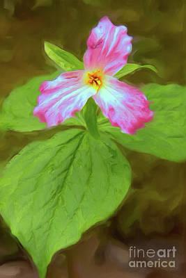 Painting - Trilliam Flower Closeup In The Blue Ridge Ap by Dan Carmichael