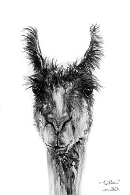 Drawing - Trillian by K Llamas