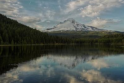 Photograph - Trillium And The Hood - 1  by Hany J