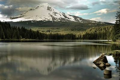 Photograph - Trillium And The Hood - 2 by Hany J