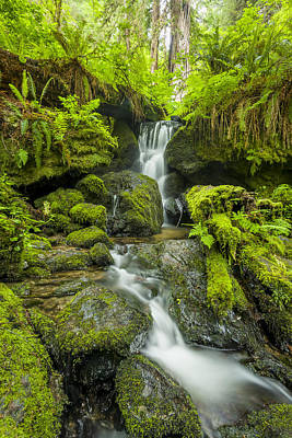 Photograph - Trillium Falls 1 by Joe Doherty