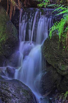 Photograph - Trillium Falls 2016 by Ralph Nordstrom