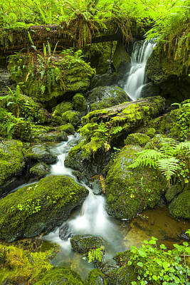 Photograph - Trillium Falls 3 by Joe Doherty