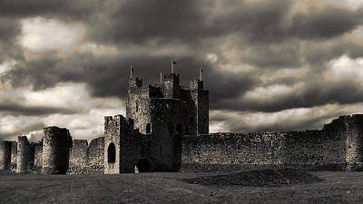 Photograph - Trim Castle by Menega Sabidussi