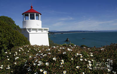 Photograph - Trinidad Lighthouse California by Bob Christopher