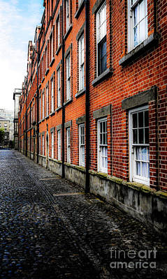Photograph - Trinity College Dublin Bulding by Lexa Harpell