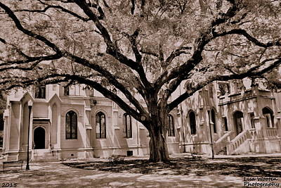 Trinity Episcopal Cathedral Court Yard Art Print by Lisa Wooten