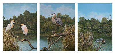 Cattle Egret Painting - Trio Bird Paintings by Andrea Ellwood