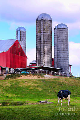 Photograph - Trio Of Silos by Polly Peacock