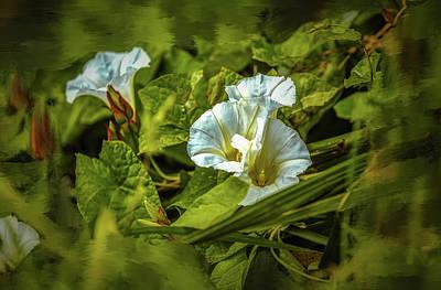 Photograph - Triple White #g5 by Leif Sohlman