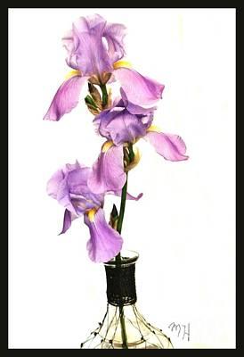 Triplet Irises Original by Marsha Heiken