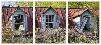 Photograph - Triptych Windows by Denise Bush