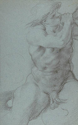 Drawing - Triton Sounding A Conch Shell by Annibale Carracci