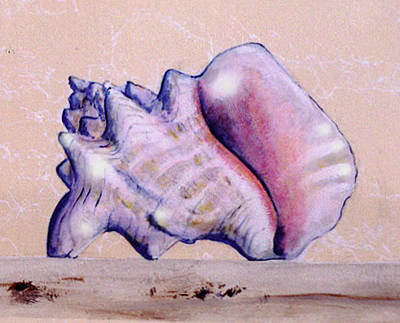 Painting - Trompe L'oeil Conch Shell by Thomas Lupari