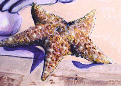 Painting - Trompe L'oeil Star Fish by Thomas Lupari