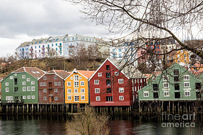 Photograph - Trondheim Colors by Suzanne Luft