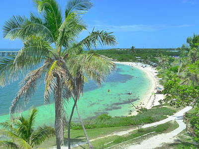Tropic Beach Art Print